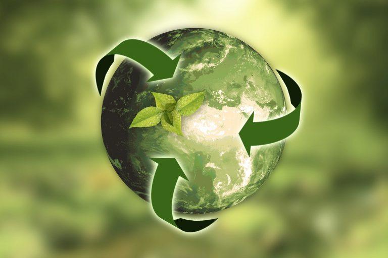 Kasvi kiertää maapallon ympäri